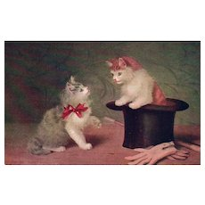 1909 Playful Kitten in Magic Top hat with gloves and wand vintage postcard