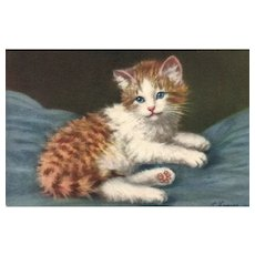 Artist Signed A Lampe White and orange blue eyed Kitten cat  #169 Vintage Postcard