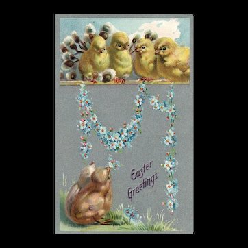 1909 Raphael Tuck Series 101 Easter Chicks With Forget Me Not Flowers Postcard