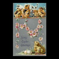 Raphael Tuck Easter Postcard series 101 Chicks Pink Daisy