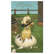 Easter Chick in Easter Bonnet with large feather Sending Greetings Series 1919