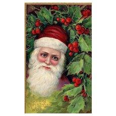 Blue eyed Santa Claus in Holly Bush vintage Christmas Postcard Series 1480
