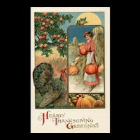 John Winsch John Winsch  pilgrim Pumpkins Apple Tree Turkey Vintage Postcard