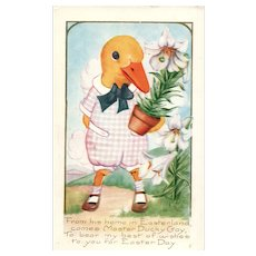 Vintage duckling easter postcard in a outfit offering flowers as a gift