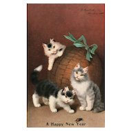 A Happy New Year Cat Kittens playing with ornament Vintage Postcard