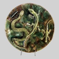 Portuguese Palissy Majolica Wall Plate with Reptiles