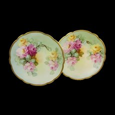 A Pair of Antique Limoges Plates Hand Decorated Multicolored Tea Roses