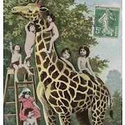 Giraffe with Multiple Babies Antique German Collage Postcard