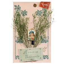 3-D Novelty French Souvenir Postcard with Dried Foliage