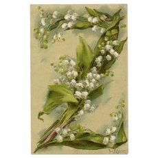 Catharina Klein Floral Alphabet Letter Z Unused French Postcard Circa 1903