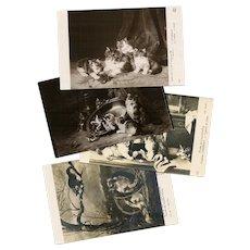 Cats and Kittens 4 Art Reproduction Postcards Salon de Paris