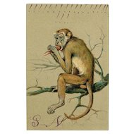 Monkey Eating Lobster Embossed Chromolithograph Postcard Franked 1905