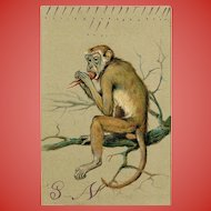 Monkey Eating Lobster Embossed Chromolithograph Postcard Franked 1905