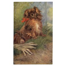 Pekin Spaniel Raphael Tuck Oilette Pet Dog Series Unused Antique Postcard