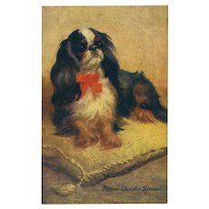 Prince Charles Spaniel Raphael Tuck Pet Dog Series Artist Signed