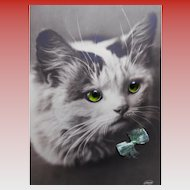 Real Photo Novelty Postcard of Cat with 3-D Elements: Ribbon and Green Glass Eyes