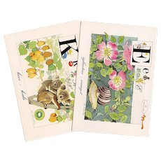 Vintage French Alphabet Series Koala and Escargot Postcards