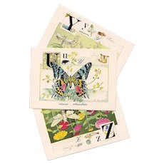 1988 French Nature Alphabet Series Butterflies and Moths Postcards