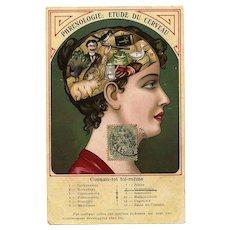 Unique Humorous Illustrated Phrenology Postcard Franked 1906