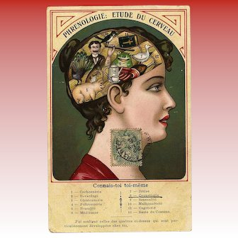 Unique Humorous Illustrated Phrenology Postcard Franked 1906