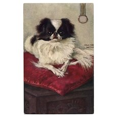 Maud West Watson Japanese Spaniel Tuck's Postcard Unused