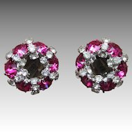Warner Signed Vintage Rhinestone Earrings