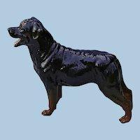 Superb Vintage Royal Doulton Rottweiler Dog Figurine