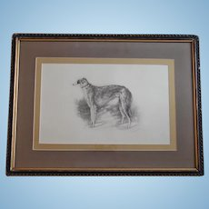 1933 Russian Artist Martynow Lithograph of Tsar's Borzoi Wolfhound Dog Limited Edition Original Frame