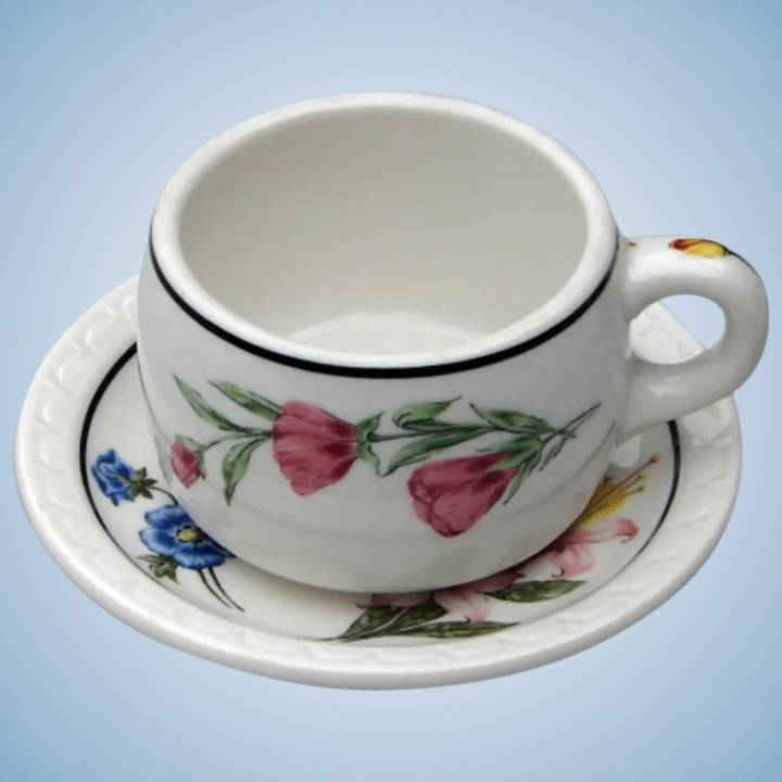 Southern Pacific Railroad China Prairie Mountain Wildflowers Cup & Saucer  Set SPRR