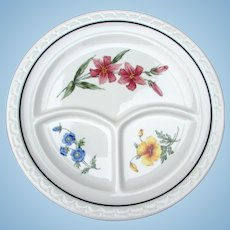 Vintage SUPERB Southern Pacific Railroad China Prairie Mountain Wildflowers Divided Dinner Grill Plate