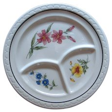 "Incredible Southern Pacific Railroad China ""Prairie Mountain Wildflowers"" Divided Dinner Grill Plate"
