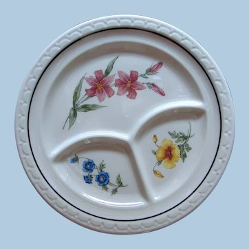 """Incredible Southern Pacific Railroad China """"Prairie Mountain Wildflowers"""" Divided Dinner Grill Plate"""