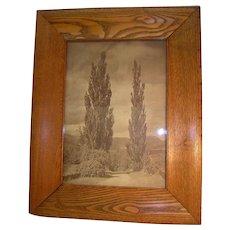 Antique Oak Frame