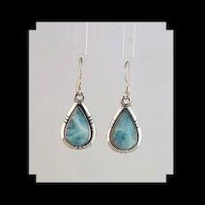 Navajo Sterling and Tropical Blue Larimar Earrings
