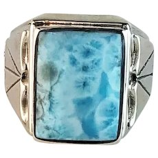 Navajo Sterling and Larimar Mens Ring  Size 14