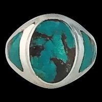 Sleek Native American Sterling and Turquoise Ring
