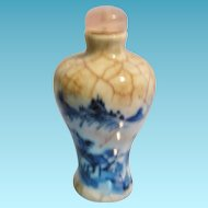 Antique Chinese Porcelain Snuff Bottle