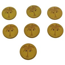 Vintage Carved Early Plastic Tropical Palm Tree Buttons  Set of 7