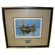 1983 Blue Winged Teal Framed Print and Duck Stamp Signed Rockne Knuth 7/200