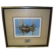 1983 Blue Winged Teal Framed Print and Duck Stamp Signed Rockne Knuth 7/200