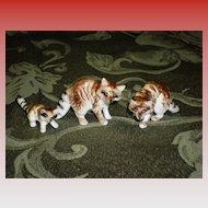 Set of 3 Porcelian Raccoon Figurines