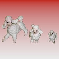 Set of 3 Porcelain Poodle Figurines