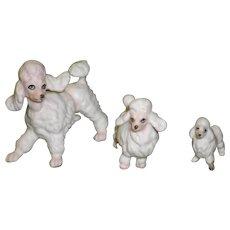 Set of 3 Porcelain Poodle Figurines