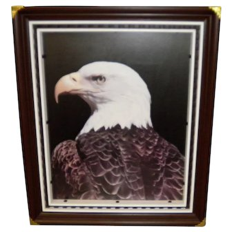 Vintage Hand Crafted Framed American Bald Eagle Picture
