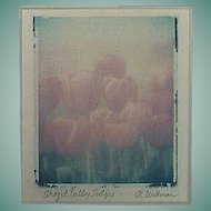Monoprint Transfer of Tulip Festival flowers in Skagit Valley, Washington, signed by artist (late 1990s with frame)