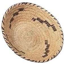20th C North American Sweet Grass Coiled Basket with Geometric Pattern in Dark Brown Devil's Claw