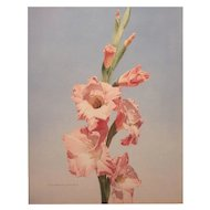 Clive Bradshaw Cushing Watercolor Painting of Gladiolas 1976