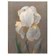 Dimitri Romanovsky Early Modernist Oil Painting Still Life of an Iris