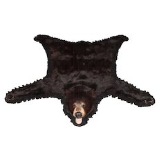 20th Century American or Canadian Black Bear Skin Rug