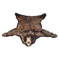 20th c Color Phase North American Black Bear Skin Rug